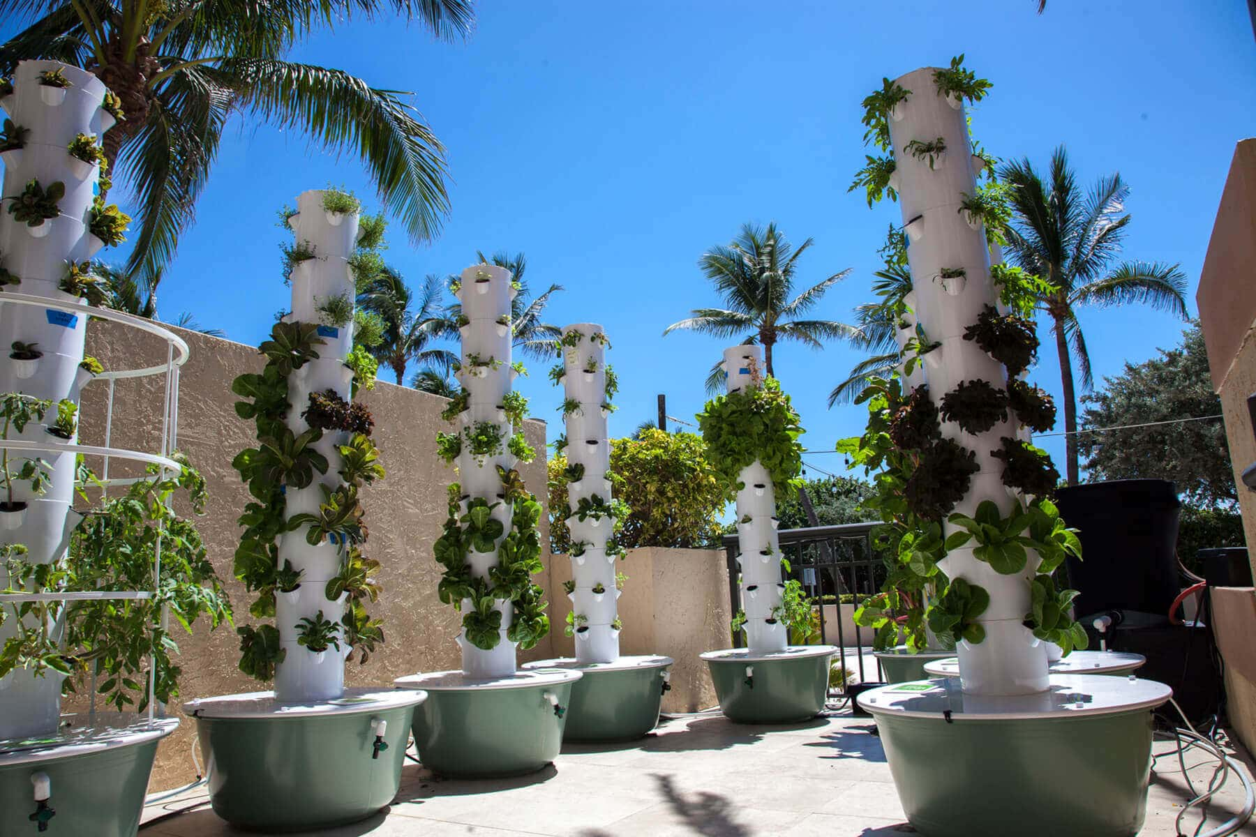 Purlife Cafe Plant Towers